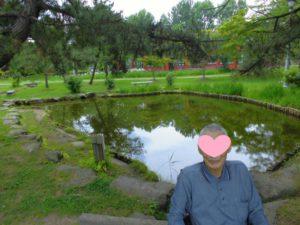 白岩様 菖蒲の花 編集