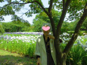 菖蒲の花編集